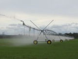 Grain_field_pivot_irrigation_2181.jpg